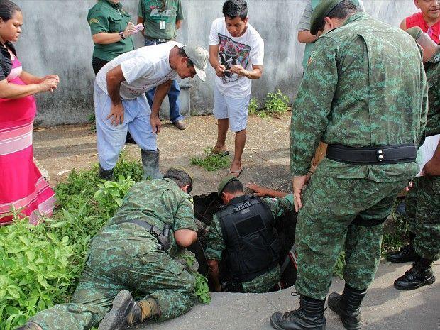 Sucuri encontrada em bueiro em Manaus 2